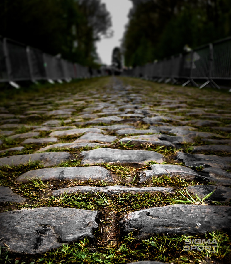 Arenberg Trench cobbles