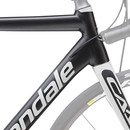 Cannondale CAAD12 Disc Road Frameset 2016