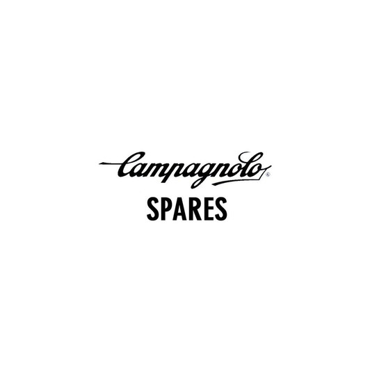 Campagnolo FH-B13 Pawl For Freehub Body (Set Of 3)